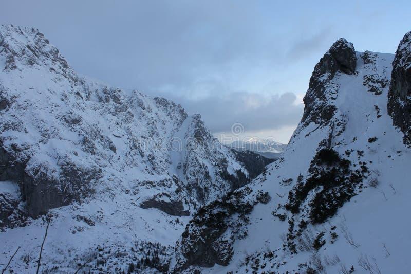 Förkylning och lugn som är höga i de Tatra bergen royaltyfri foto