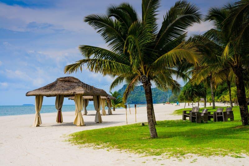 Förlägga i barack gifta sig och palmträd på stranden arkivbild