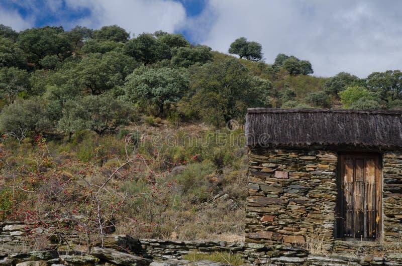 Förlägga i barack och medelhavs- skog arkivbild