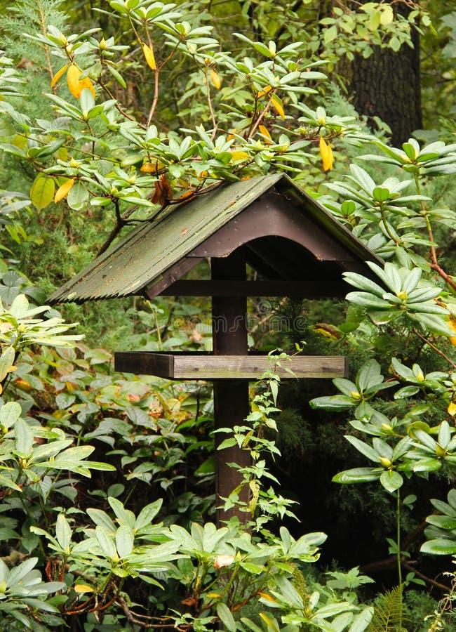 Download Förlagematare för fåglar fotografering för bildbyråer. Bild av vegetation - 78729169