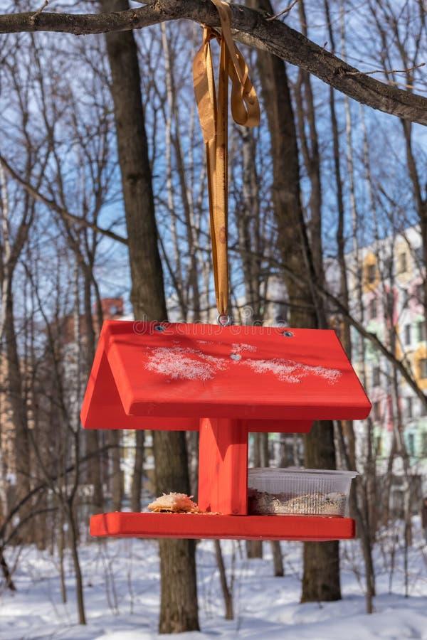 Förlagematare-huset för fåglar i vintern parkerar, övervintrar fågelomsorg moscow russia fotografering för bildbyråer