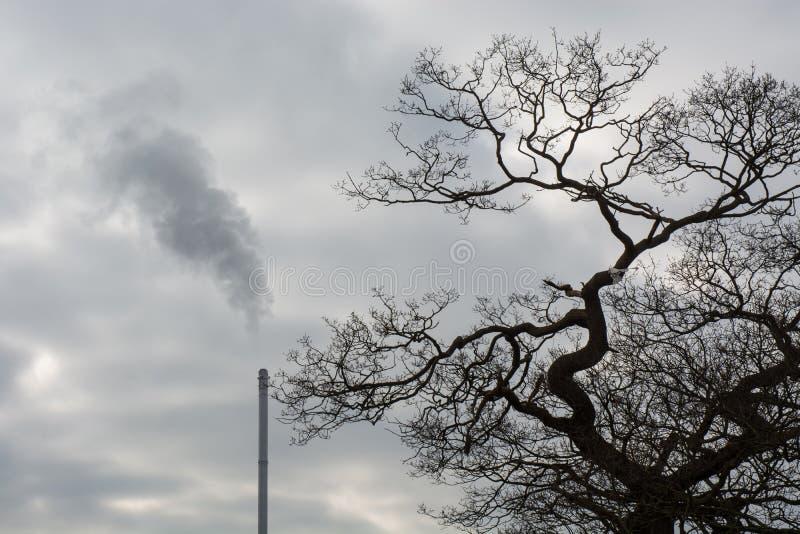 Förlorad förbränningsugnlampglas royaltyfri fotografi