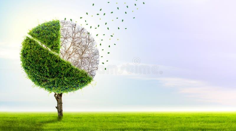Förlust av marknadsandelen pajdiagrammet är ett växande grönt träd och faller in i en affärsidé av förlorande pengar, ett symbol  vektor illustrationer
