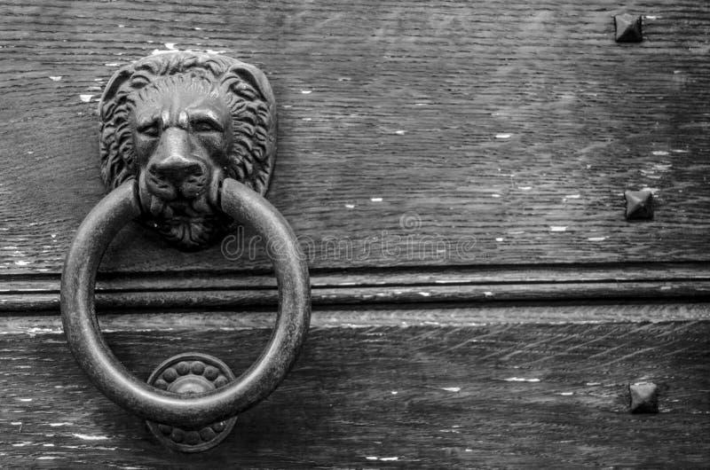 Förmyndarelejon av min dörr arkivfoto