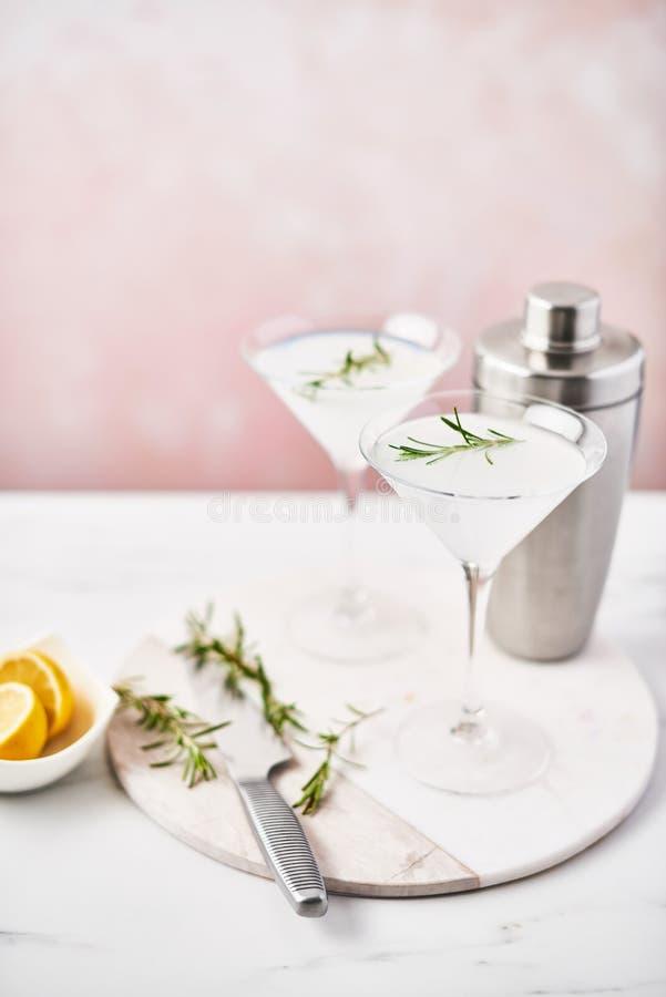 Förnyande alkoholiserad coctail för sommar med rosmarin fotografering för bildbyråer