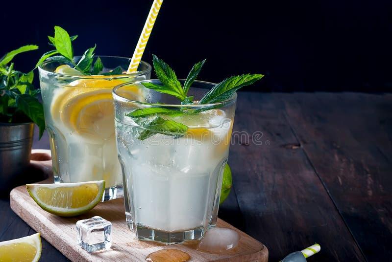 förnyande drink för sommar med citronen och mintkaramellen, mojito royaltyfri fotografi