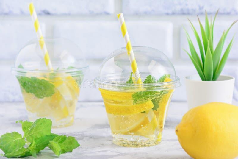 Förnyande dryck för vatten för citrus mintkaramell för Detox Sassy royaltyfri bild