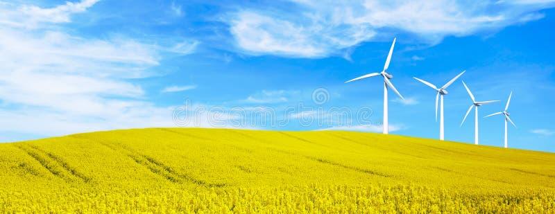 Förnybara energikällor med vindturbiner i gula blommakullar Miljö- bakgrund för ekologi för presentationer och websites arkivbild