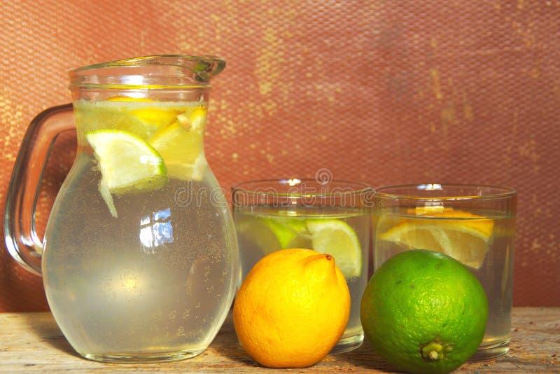 Förnyelse av hem gjorda Limonade royaltyfria bilder