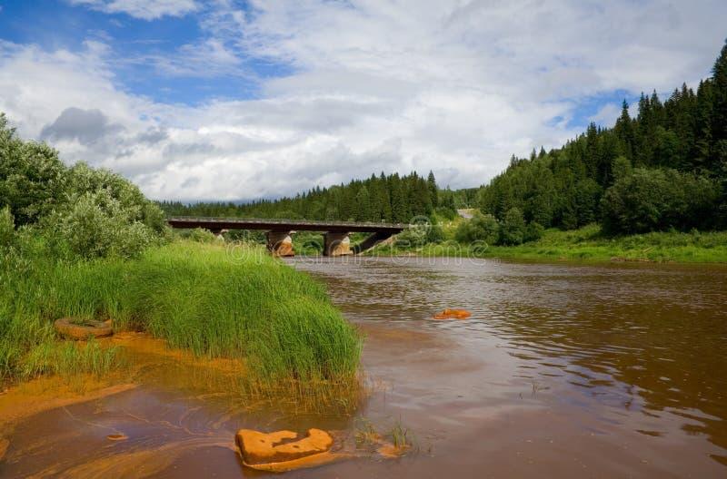förorenad flod royaltyfri foto
