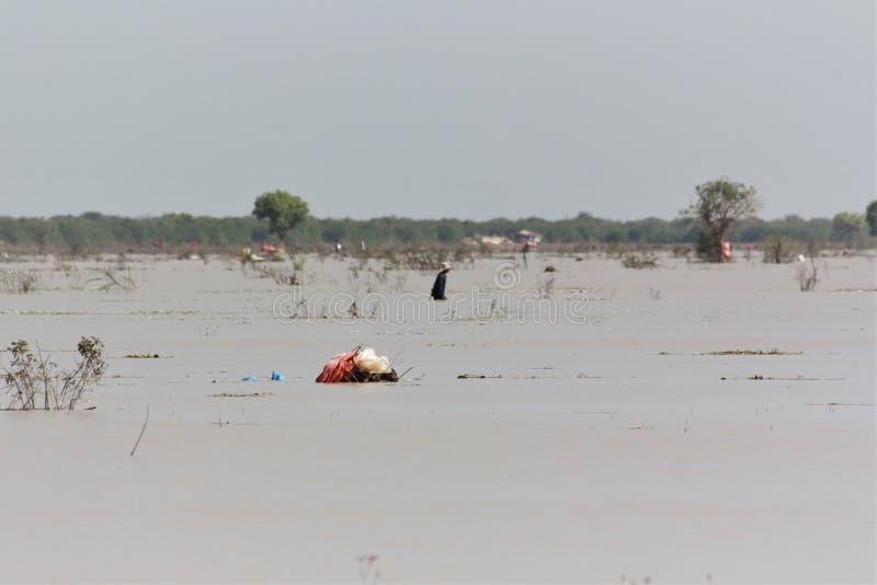 förorenad flod arkivbild