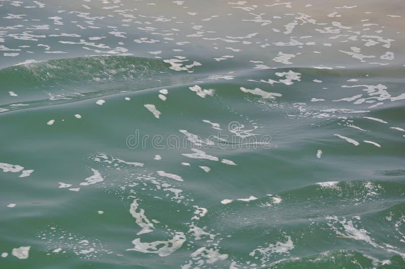 förorenat vatten arkivfoton