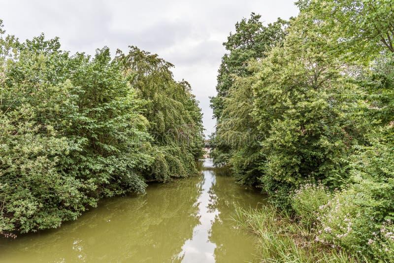 Förorenat vatten för grön alg i den Arreso kanalen på Frederiksvaerk, Danmark arkivfoton