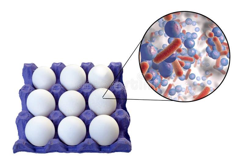 Förorening av ägg med bakterier, medicinskt begrepp för överföringen av matinfektioner till och med ägg royaltyfri fotografi