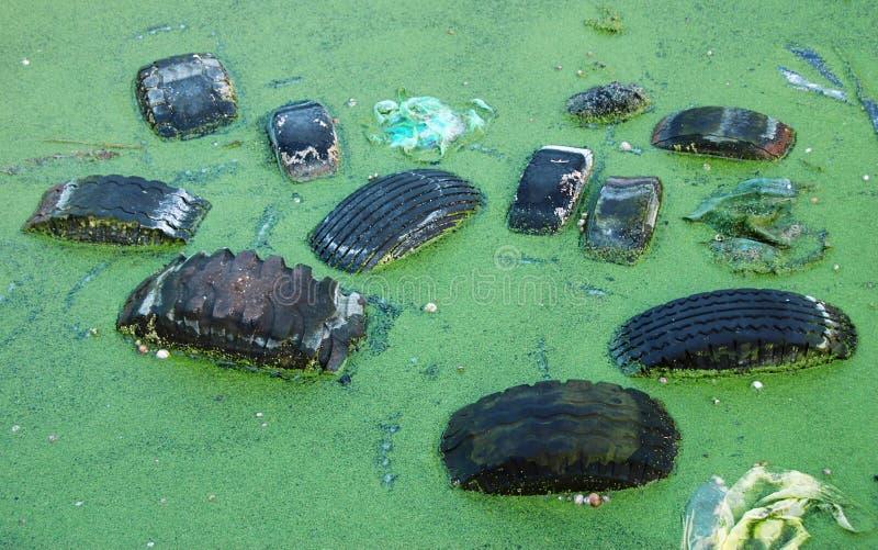 föroreningdamm arkivfoton
