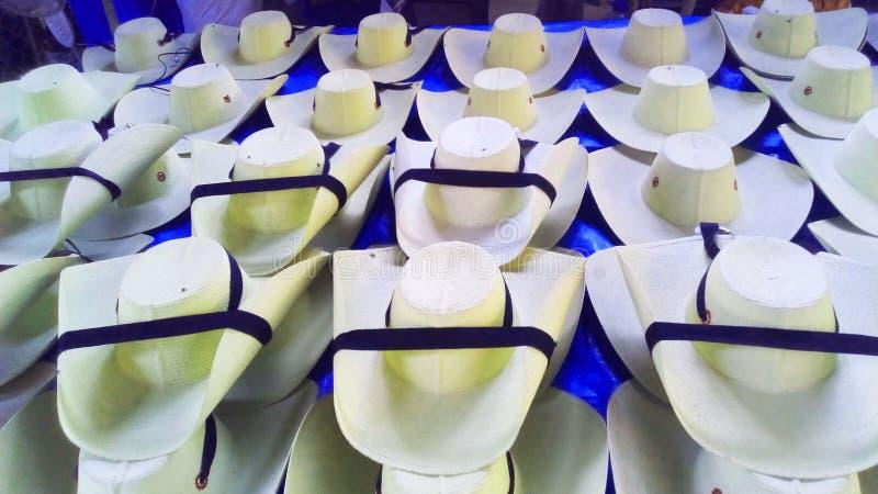 Försäljningar av tierracaliente utformar hattar i Quetzala, Guerrero, Mexico royaltyfri bild