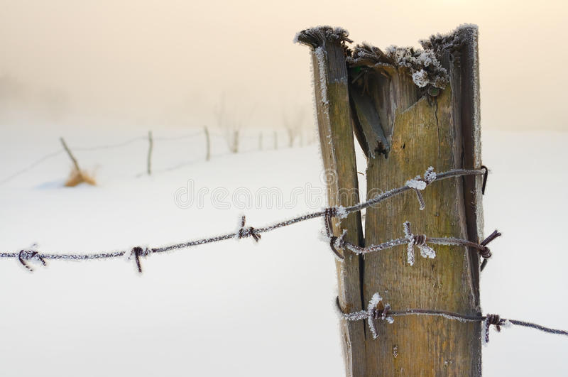 Förse med en hulling - binda doldt med snow arkivbild