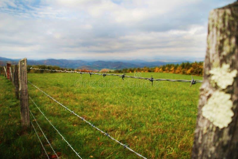 förse med en hulling staketfälttråd royaltyfri foto