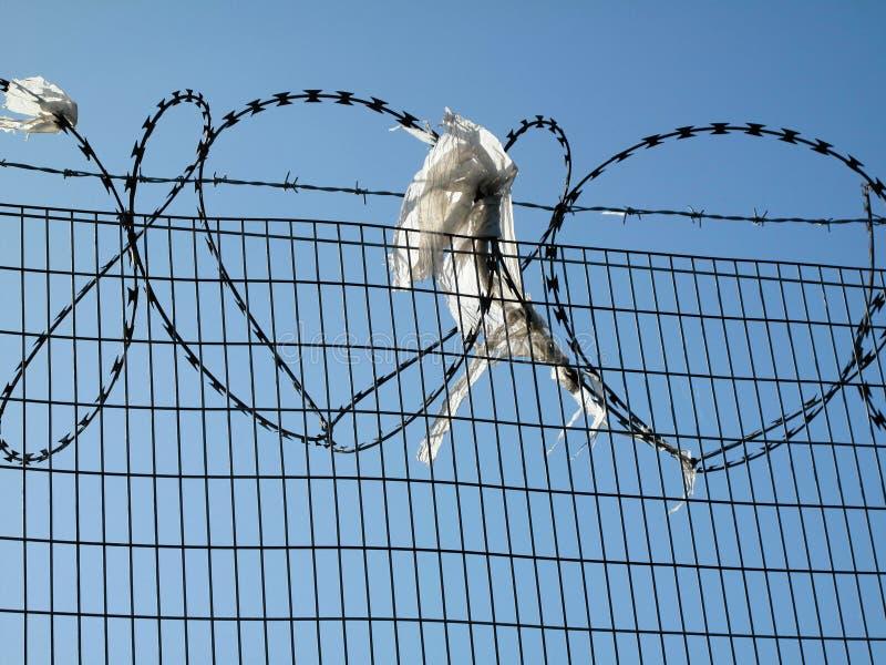 Försedd med en hulling & för rakknivtrådsäkerhet skydd på staketet royaltyfri foto