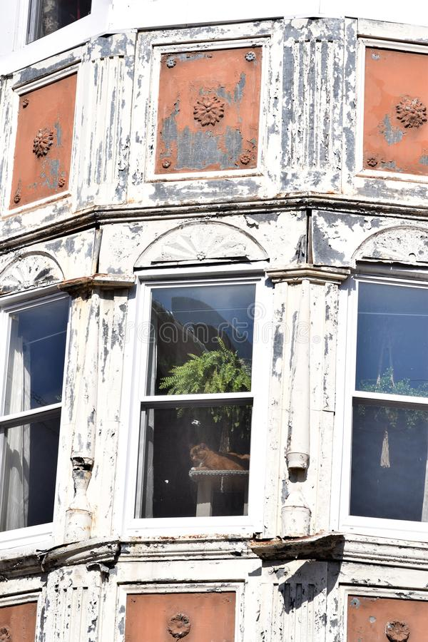 Förser med rutor det Glass fönstret för tappning i den Wood ramen arkivbild