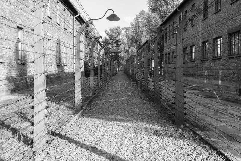 Försett med en hulling - binda i koncentrationsläger av Auschwitz-Birkenau arkivfoton