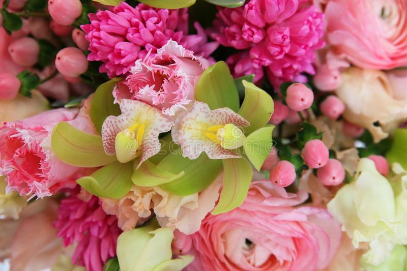 Försiktig blom- bakgrund med orkidér royaltyfri fotografi