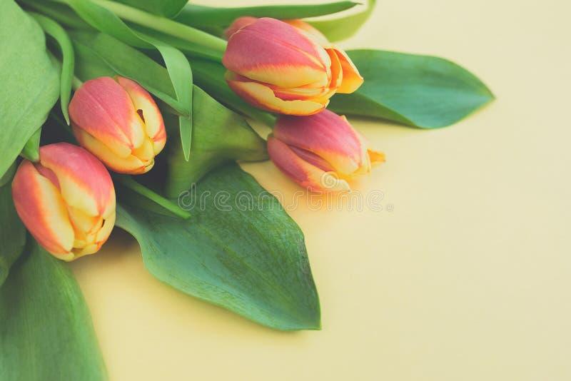 Försiktig bukett av nya orange tulpan på beige bakgrund med kopieringsutrymme royaltyfri fotografi