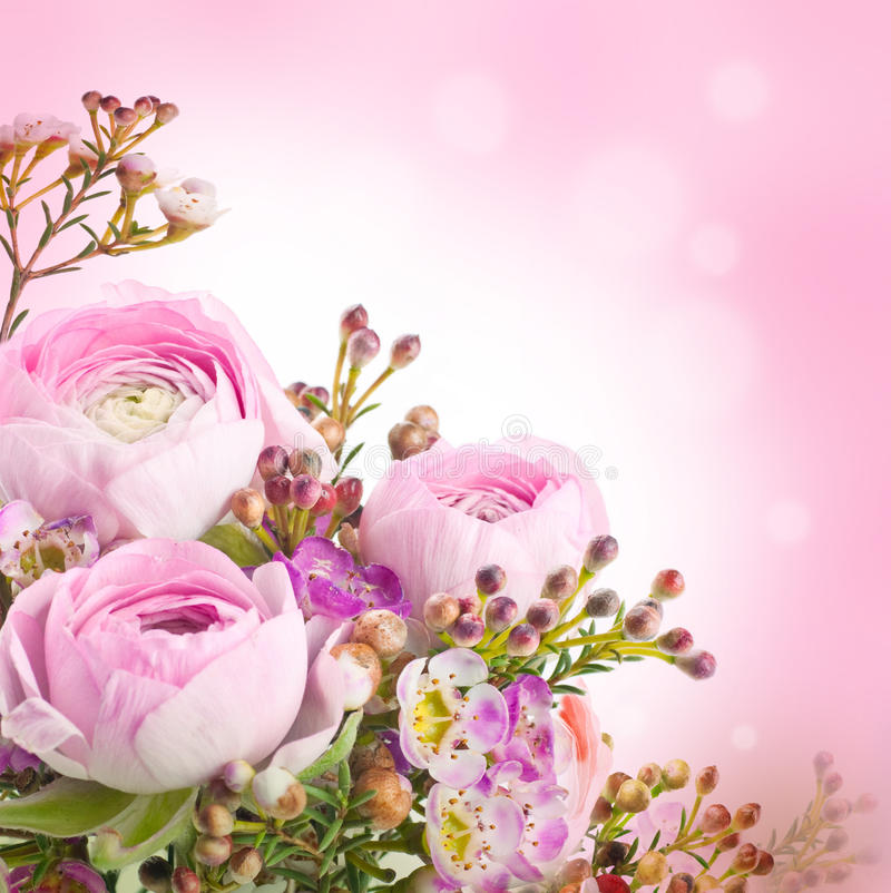 Försiktig bukett från rosa rosor fotografering för bildbyråer