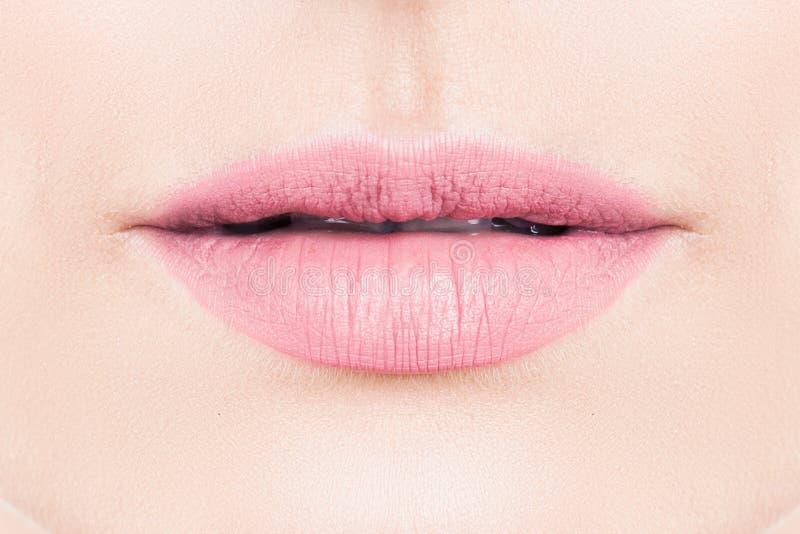 Försiktiga kvinnliga kanter med rosa läppstiftmakeup arkivbild