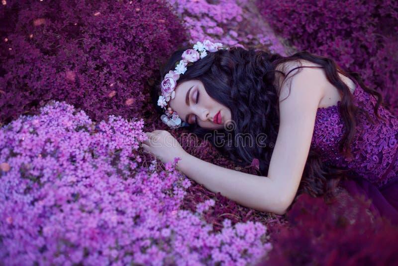 Försiktiga och behagfulla flickasömnar på ett magiskt purpurfärgat blommafält, en drömma skönhet med långt mörkt hår och en rosa  arkivfoto