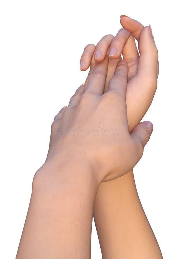 Försiktigt handlag av kvinnliga händer royaltyfria foton