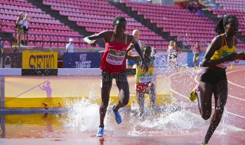 FÖRSKONING CHEPKURUI från Kenya på den 3000m HINDERLÖPNINGEN på mästerskapet Tammerfors, Finland för IAAF-värld U20 royaltyfri bild