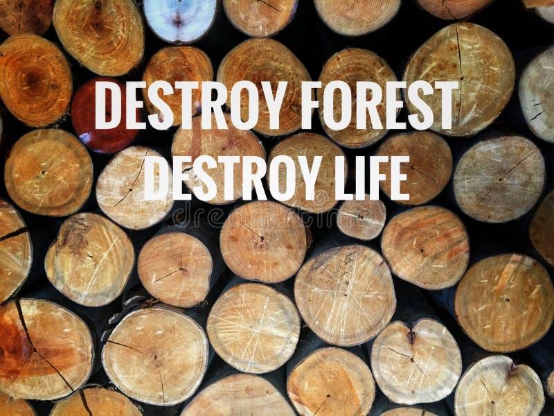 Förstör skogens öde arkivfoto