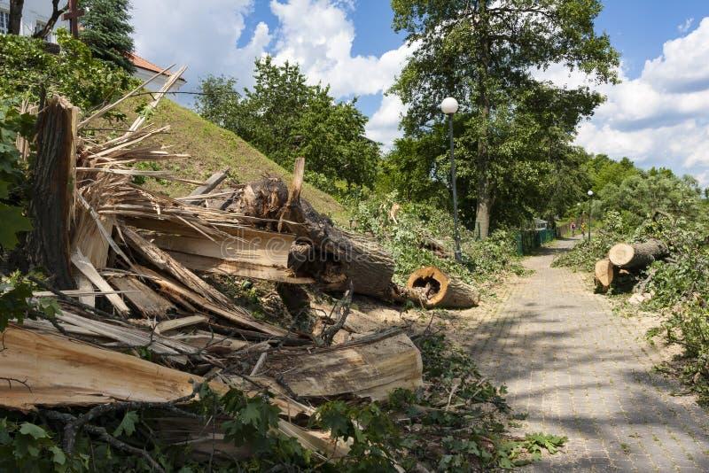 Förstörelse på cykelbanan efter orkanvindarna arkivbild