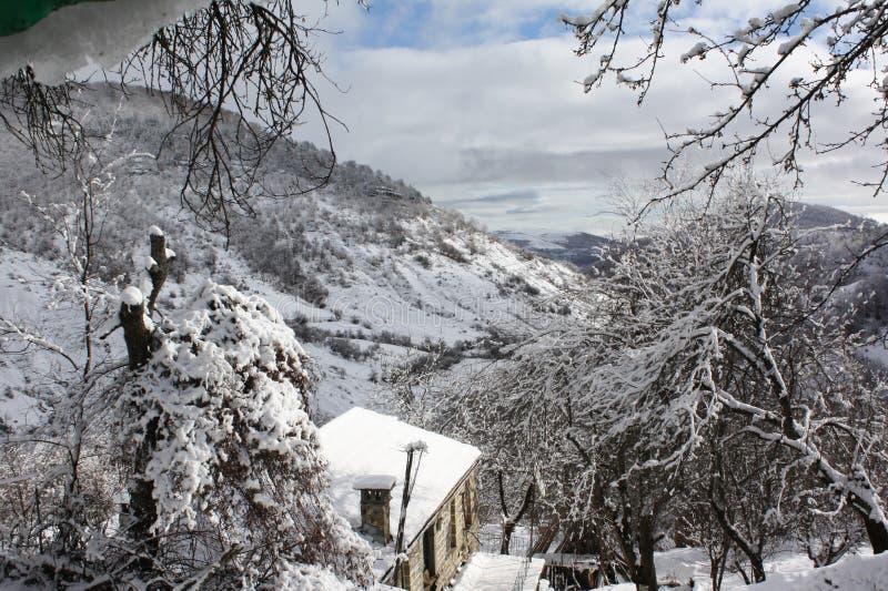 Första dagar av vintern royaltyfria foton