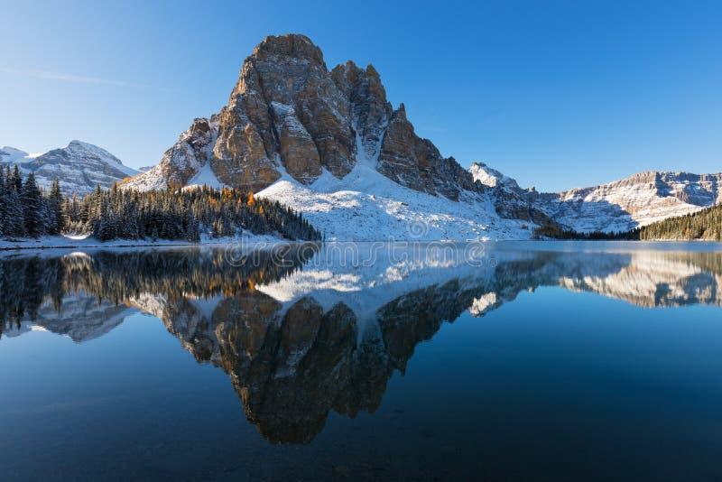 Första insnöade kanadensiska berg Gula lärkträd reflekterar som en spegel i den Sunburst sjön nedanför ett stenigt maximum arkivfoton