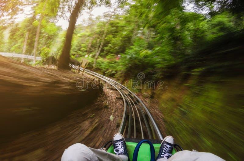 Första personsikt av en man som rider en rollercoastervagn i djungler suddighet rörelse royaltyfri bild
