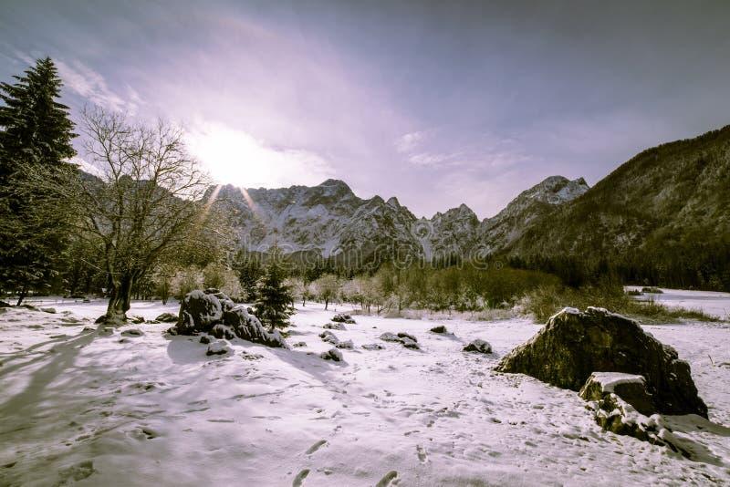 Första snö på berget royaltyfri fotografi