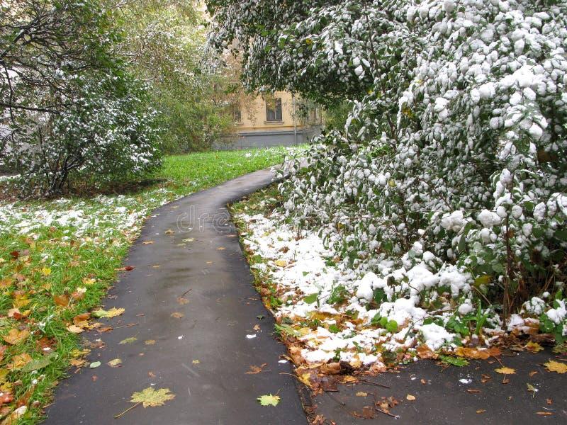 Första snö på staden royaltyfri foto