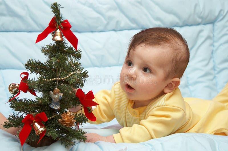 första tree för jul royaltyfri fotografi