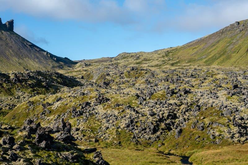 Förstenat lavafält ner en bergssida i Island royaltyfria foton