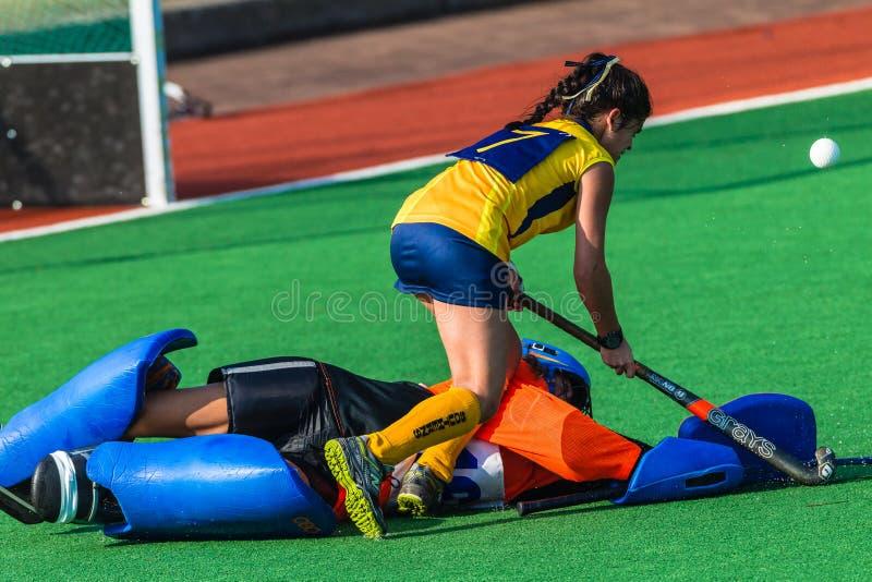Försvarande handling för hockeyflickaGoalie royaltyfri foto