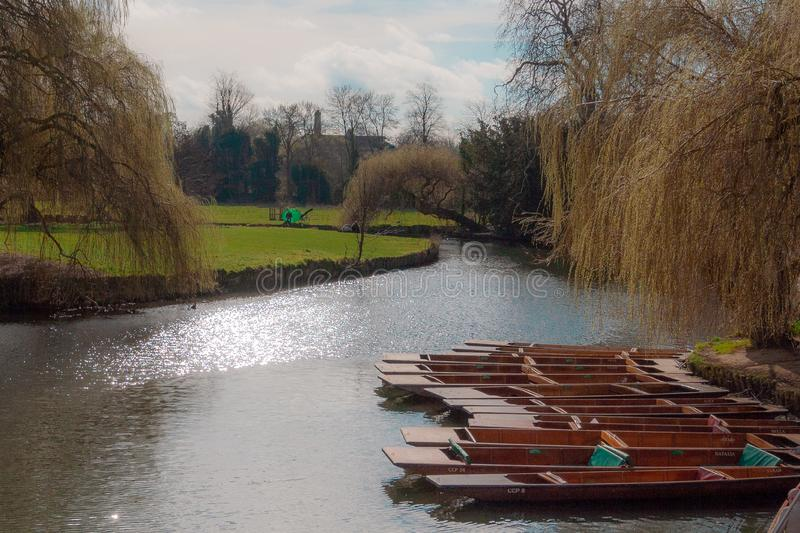 Förtöjde stakbåtar på flodkammen royaltyfri bild