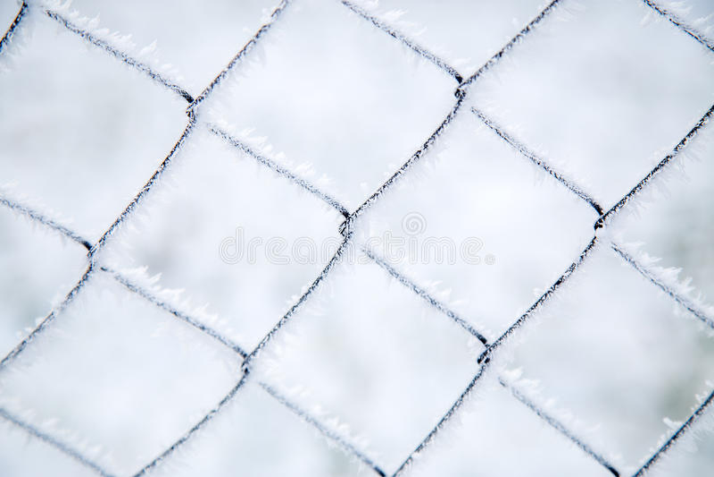 Förtjäna för ingrepp som täckas med frost royaltyfri fotografi