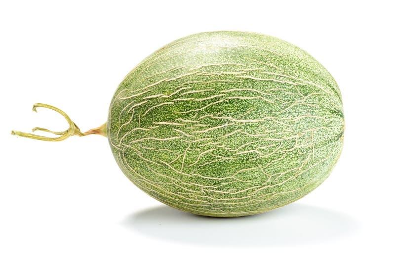 förtjänad melon royaltyfri bild