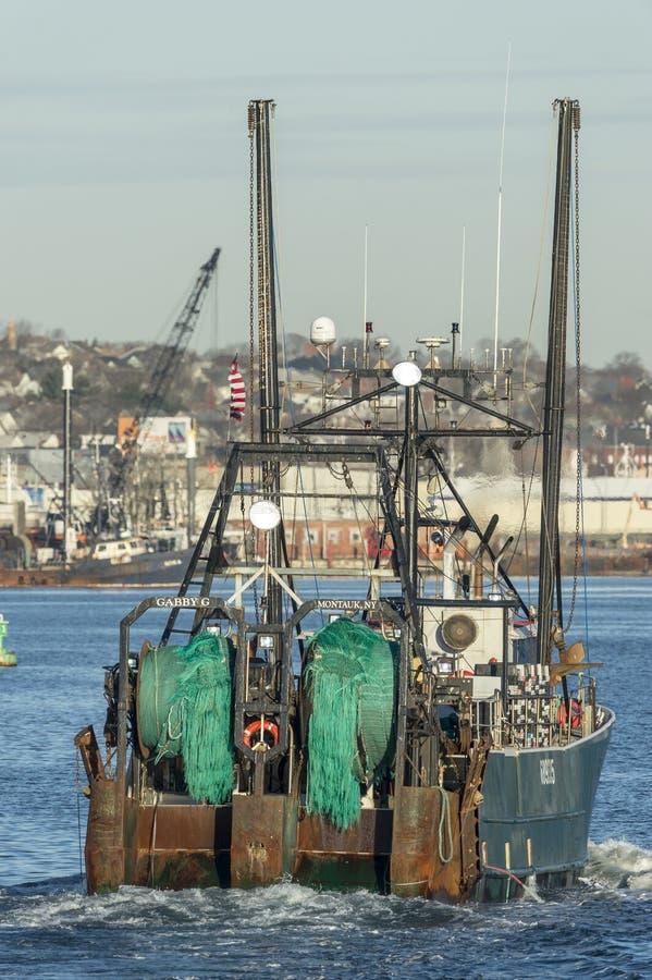 Förtjänar i barskt pratigt G för siktsfiskeskytteln royaltyfri foto