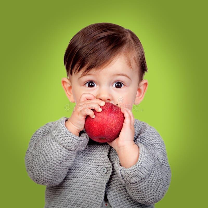 Förtjusande behandla som ett barn äta ett rött äpple fotografering för bildbyråer