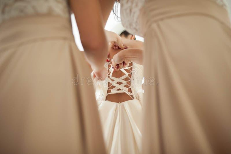 Förtjusande brudtärnaklänningbrudar hjälper den eleganta klänningen royaltyfri bild