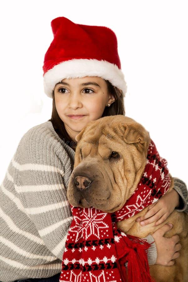 Förtjusande flicka som bär en santa hatt som rymmer en Shar Pei hund royaltyfri bild