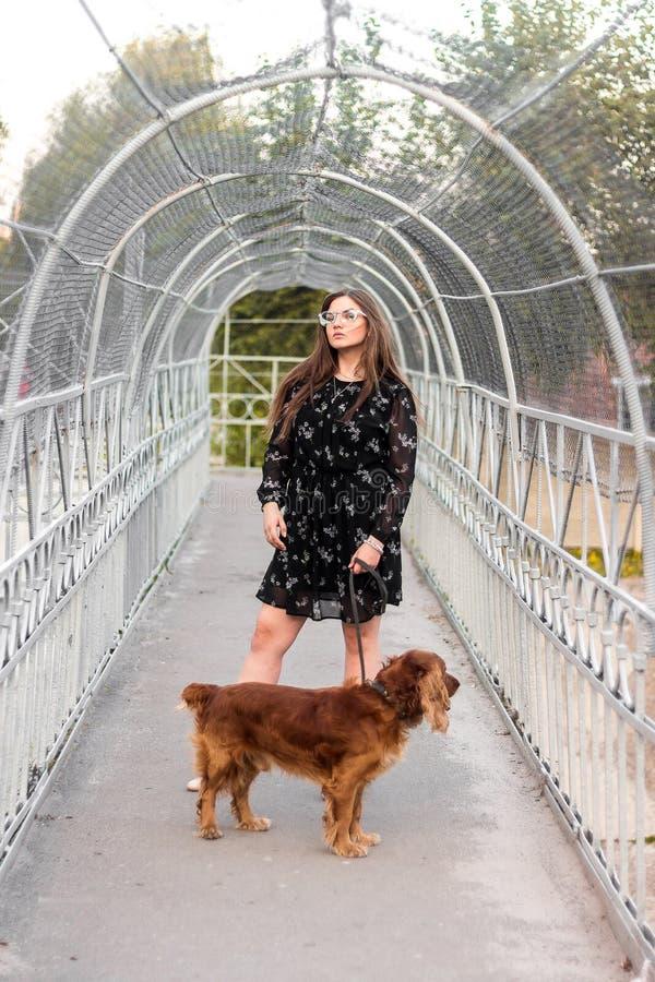 Förtjusande flicka som poserar med hunden Härligt tonåringanseende för ung kvinna på bron arkivbilder